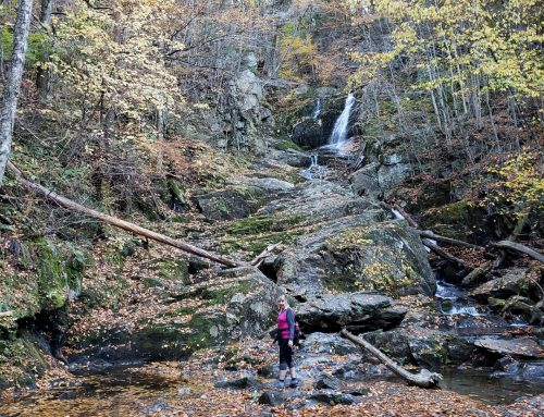 Sanderson Brook Falls in Chester