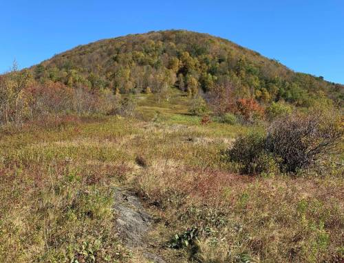 Jones Nose to Saddleball Mountain at Mount Greylock