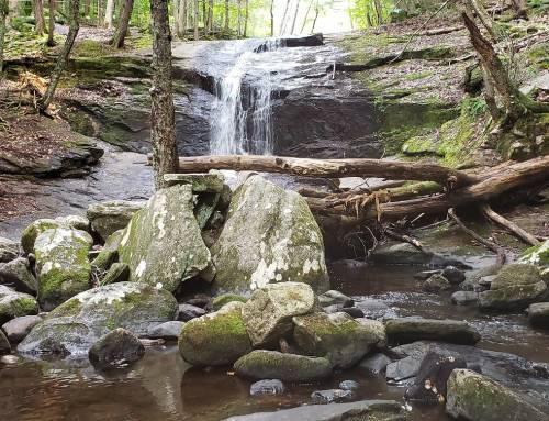 Chapel Brook Falls in Ashfield