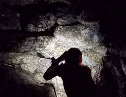 Video from English Grass Cave in Montgomery #flashhike