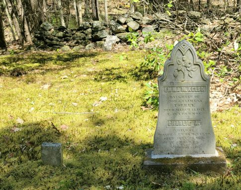 Damon Cemetery in Chesterfield