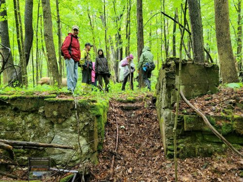 Group Hike to the Spencer Cellar Hole in Dayville Chester 05-29-21