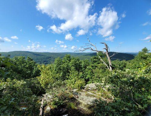 Tekoa Mountain to Vista #2 Montgomery
